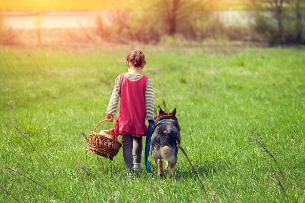 内向者的力量 | 如何正确对待性格内向的孩子?