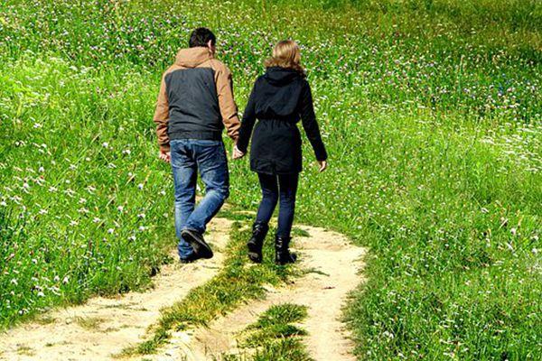 grass-1690717__340.jpg