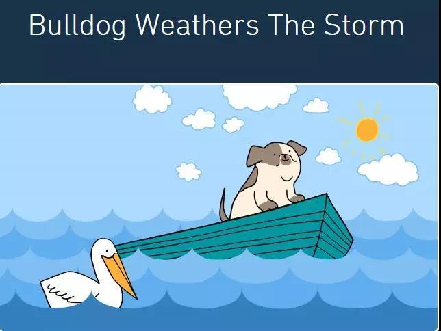一只可爱的狗狗乘坐在大海里的一艘小船上.