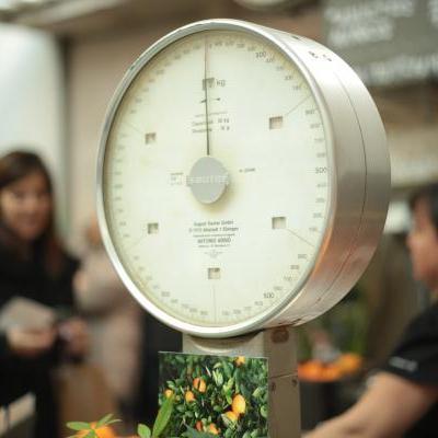 测测你10年之后的体重