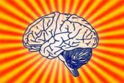 你是左脑人还是右脑人?