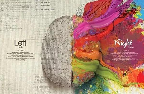 """深度干货:高段位的人都会""""全脑思维"""""""