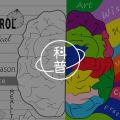 为什么社交网络的信息书本更难忘?| 研究记忆图片路径