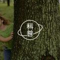 不会沟通——中国式家庭的主要问题图片路径