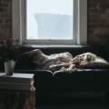 """豆瓣高评分《追眠记》:你有多久没有""""好好睡觉""""了?图片路径"""