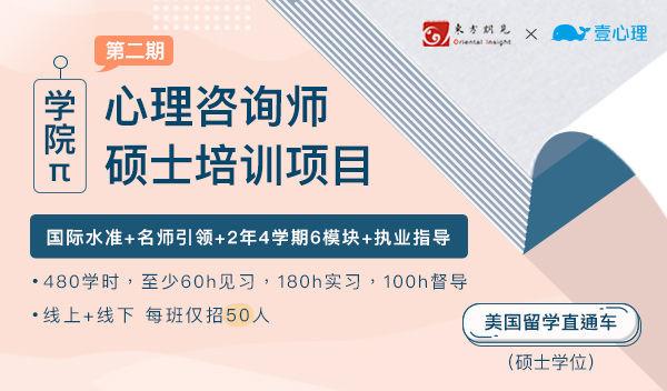 【硕士水平+成为咨询师】学院π培训项目(定金通道)