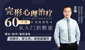 完形心理治疗:60节课,从入门到精通