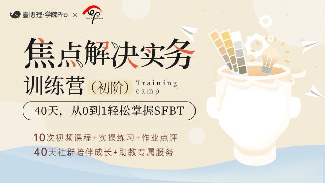 【首发最低价】焦点解决实务训练营(初阶)  8月9日开营